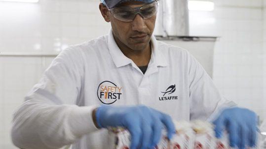 lesaffre supply chain
